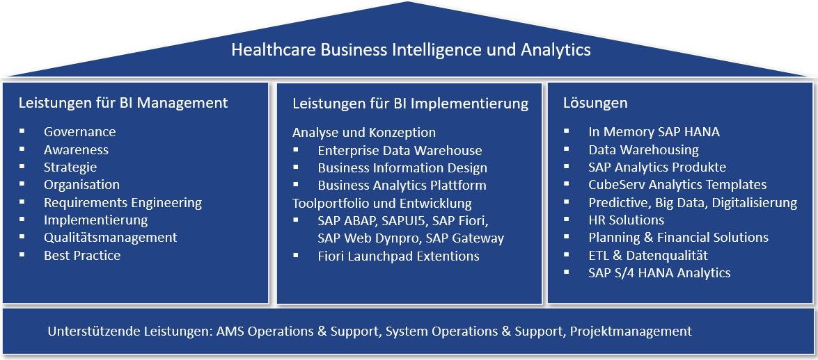 Healthcare Business Intelligence und Analytics, Leistungs- und Lösungsportfolio